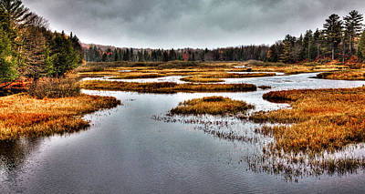 Fir Trees Photograph - The Moose River In Old Forge by David Patterson