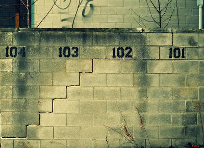 Photograph - The Numbers Say It by Cyryn Fyrcyd