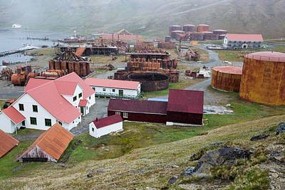 The Old Whaling Station At Grytviken Art Print by Ashley Cooper
