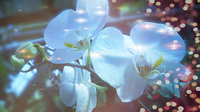 Digital Art - The Orchids With Christmas Lights by Xueyin Chen
