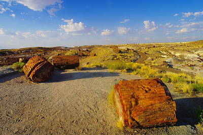 The Painted Desert Art Print