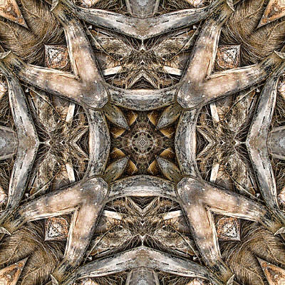 Brown Tones Digital Art - The Palm Project 16 Square by Wendy J St Christopher