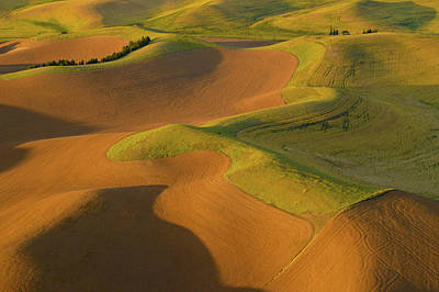 Contour Farming Photograph - The Palouse From Above by Latah Trail Foundation