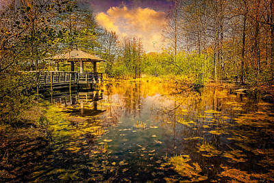 Photograph - The Wetlands by Chris Lord