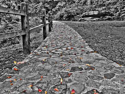 The Stone Path Art Print