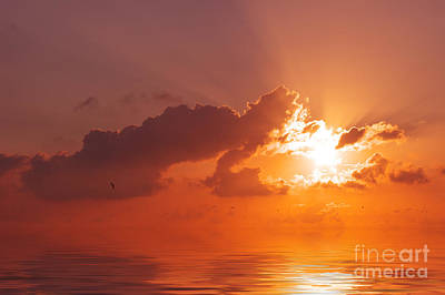 The Sunset Art Print by Angela Doelling AD DESIGN Photo and PhotoArt