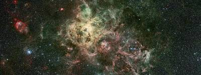 Galaxies Photograph - The Tarantula Nebula by Celestial Images