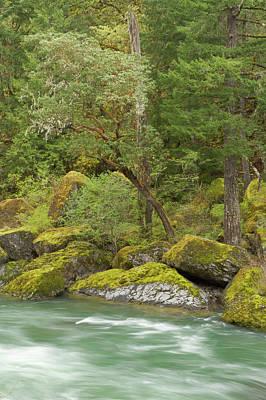 Sutton Photograph - The Umpqua River, Oregon by William Sutton