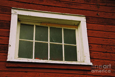 Photograph - The Window by William Norton