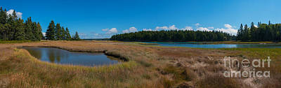 Thompson Island In Maine Panorama Art Print by Michael Ver Sprill