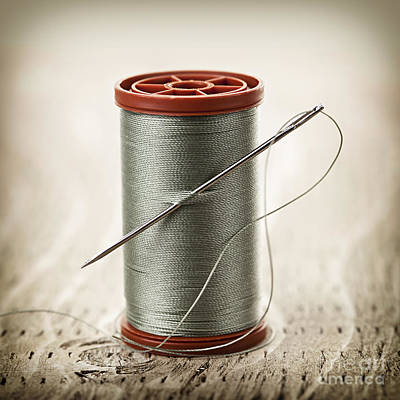 Bobbins Photograph - Thread And Needle by Elena Elisseeva