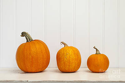 Three Pumpkins Art Print by Elena Elisseeva