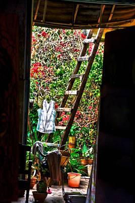 Photograph - Through The Window by Perry Frantzman