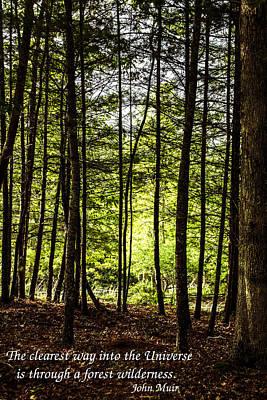 Thru The Trees With John Muir Quote Art Print