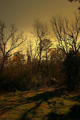 Time Of Long Shadows Print by Nina Fosdick
