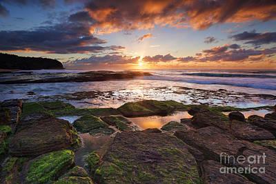 Guns Arms And Weapons - Tiurrimetta Beach Australia by Leah-Anne Thompson