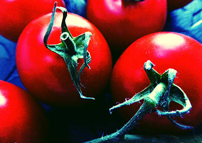 Photograph - Tomatoes by Laurie Tsemak