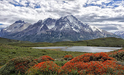 Landscape Photograph - Torres Del Paine by Claudio Bacinello