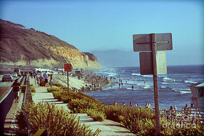 Torrey Pines State Reserve Art Print by RJ Aguilar