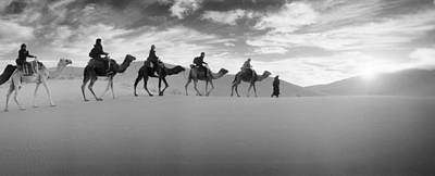 Tourists Riding Camels Art Print by Panoramic Images