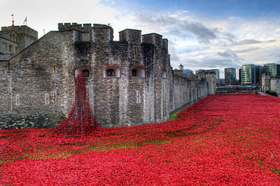 City Lights - Tower of London Poppies by Chris Day