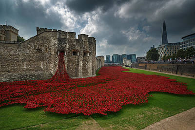 Installation Art Photograph - Tower Of London Poppies by Izzy Standbridge