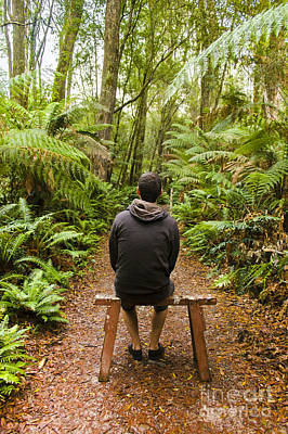 Photograph - Travel Man Sitting In A Green Lush Fern Forest by Jorgo Photography - Wall Art Gallery