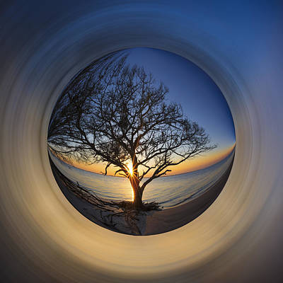 Photograph - Tree Of Life by Debra and Dave Vanderlaan