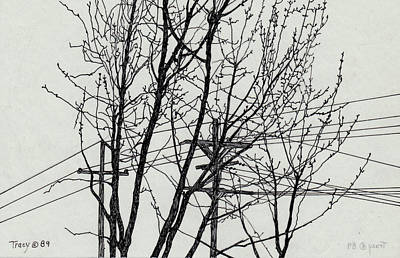 Telephone Wires Drawing - Trees And Wires by Robert Tracy