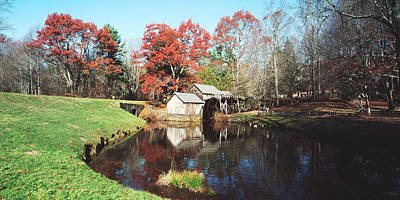 Mabry Mill Photograph - Trees Around A Watermill, Mabry Mill by Panoramic Images