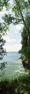 Door County Photograph - Trees At The Lakeside, Cave Point by Panoramic Images