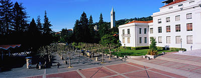 Photograph - Trees In Front Of A University by Panoramic Images