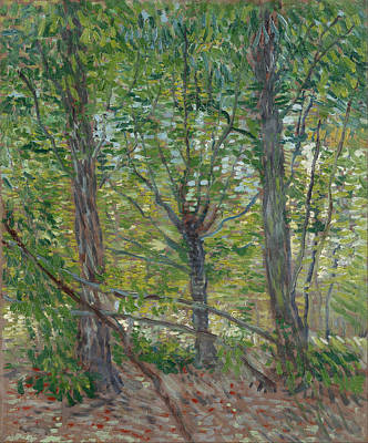 Painting - Trees by Vincent Van Gogh