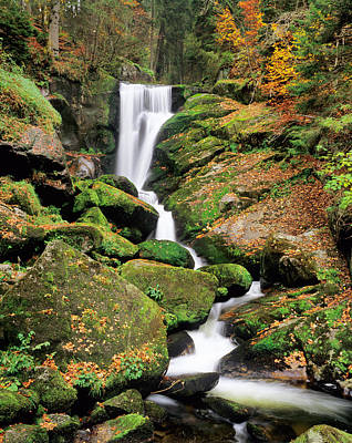Fallen Leaf Photograph - Triberg Waterfall In Autumn, Black by Panoramic Images