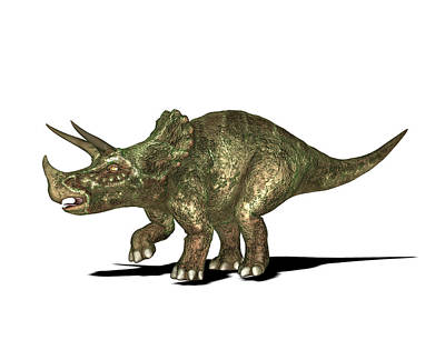 Paleozoology Photograph - Triceratops Dinosaur by Friedrich Saurer