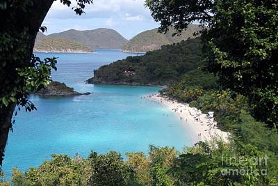 Photograph - A Happy Trunk Bay by Betty Morgan