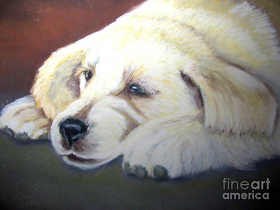 Tuckered Out Art Print by Amber Nissen