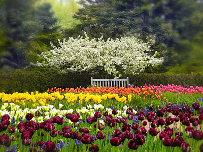 Respite Photograph - Tulip Garden by Jessica Jenney