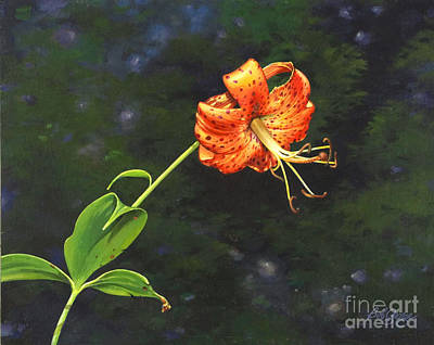 Painting - Turk's Cap by Bob  George