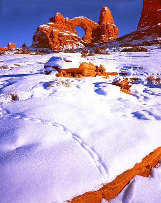 Photograph - Turret Arch Tracks by Ray Mathis
