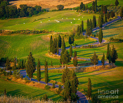 Tuscan Road Art Print by Inge Johnsson