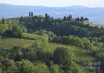 Design Turnpike Vintage Farmouse - Tuscany by Chris Selby
