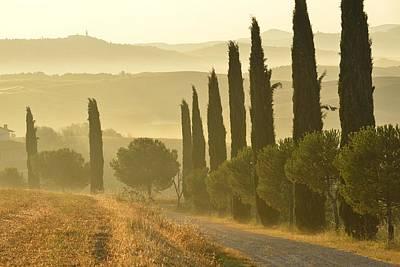 Gravel Road Photograph - Tuscany by Christian Heeb