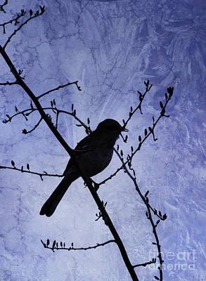 Mockingbird Digital Art - Twilight by Betty LaRue