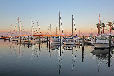 Photograph - Twin Dolphin Marina 2 by HH Photography of Florida