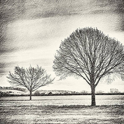 Photograph - Two Trees In A Field by Lenny Carter