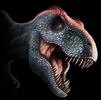 Tyrannosaurus Rex Head Art Print by Mark Garlick