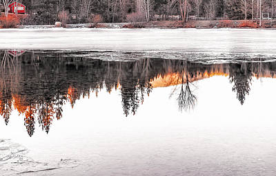 Art Print featuring the photograph Under The Ice by Nancy Marie Ricketts