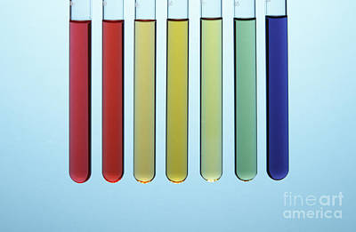 Photograph - Universal Indicator, Ph Comparison by GIPhotoStock