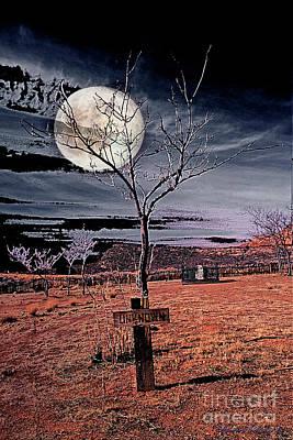 Soil Digital Art - Unknown by Barbara D Richards